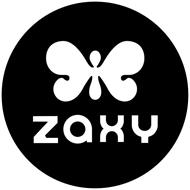 Image result for zaxy logo