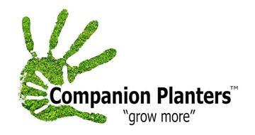 COMPANION PLANTERS