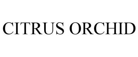 CITRUS ORCHID