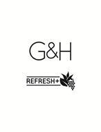 G&H REFRESH+