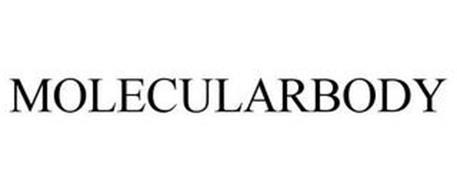 MOLECULARBODY
