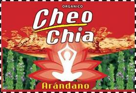 ORGANICO CHEO CHIA ARÁNDANO