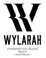 WYLARAH PUREBRED FULLBLOOD WAGYU AUSTRALIA