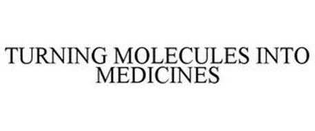 TURNING MOLECULES INTO MEDICINES