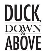 DUCK, DOWN & ABOVE