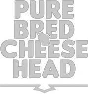PURE BRED CHEESE HEAD