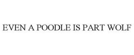 EVEN A POODLE IS PART WOLF