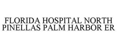 FLORIDA HOSPITAL NORTH PINELLAS PALM HARBOR ER