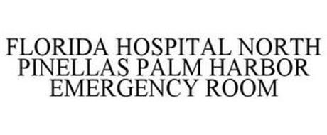 FLORIDA HOSPITAL NORTH PINELLAS PALM HARBOR EMERGENCY ROOM