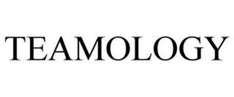 TEAMOLOGY