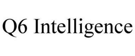 Q6 INTELLIGENCE
