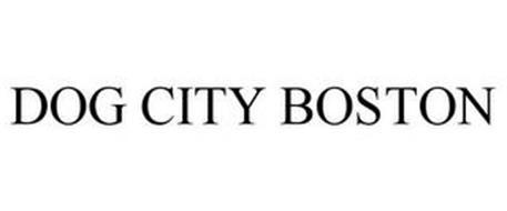 DOG CITY BOSTON