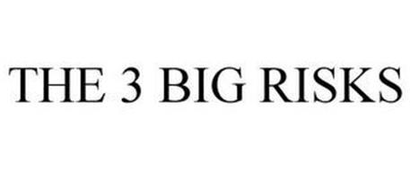THE 3 BIG RISKS