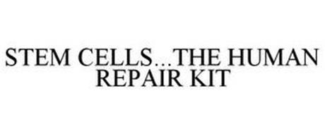 STEM CELLS...THE HUMAN REPAIR KIT