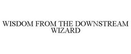 WISDOM FROM THE DOWNSTREAM WIZARD