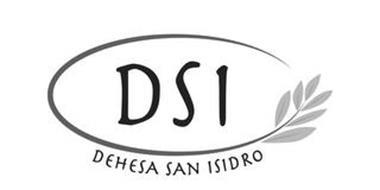 DSI DEHESA SAN ISIDRO