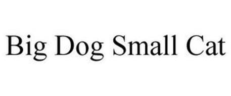 BIG DOG SMALL CAT