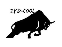 ZYD-COOL