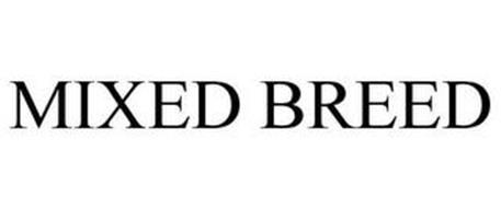MIXED BREED