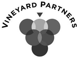 VINEYARD PARTNERS