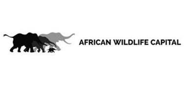 AFRICAN WILDLIFE CAPITAL