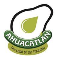 AHUACATLAN THE LAND OF THE AVOCADO