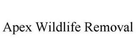 APEX WILDLIFE REMOVAL