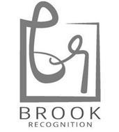 BR BROOK RECOGNITION