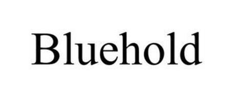 BLUEHOLD