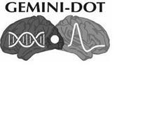 GEMINI-DOT