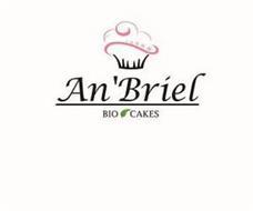 AN'BRIEL BIO CAKES