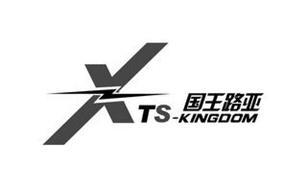 X TS-KINGDOM