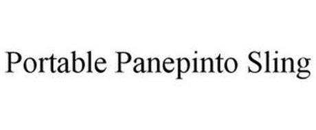 PORTABLE PANEPINTO SLING