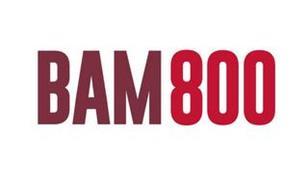 BAM800