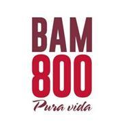 BAM800 PURA VIDA