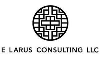 E LARUS CONSULTING LLC