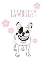 IAMBUGSY