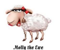 MOLLY THE EWE