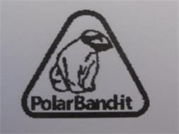 POLAR BAND-IT