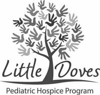 LITTLE DOVES PEDIATRIC HOSPICE PROGRAM
