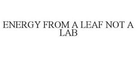 ENERGY FROM A LEAF NOT A LAB