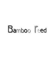 BAMBOO REED