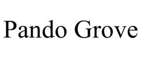 PANDO GROVE