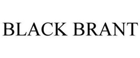 BLACK BRANT