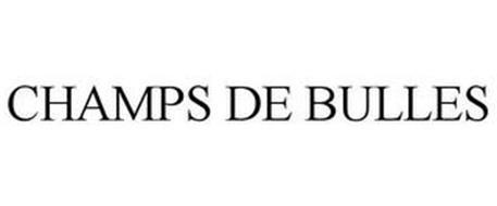 CHAMPS DE BULLES