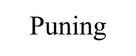 PUNING