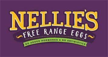 NELLIE'S FREE RANGE EGGS NO ADDED HORMONES & NO ANTIBIOTICS