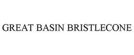 GREAT BASIN BRISTLECONE