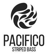 PACIFICO STRIPED BASS
