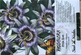 PASSIFLORA ROYAL BLUE PASSIFLORA CAERULEA 100 SEEDS SEED NEEDS PASSIFLORA IS A TROPICAL VINE THAT ORIGI-NATES FROM MUCH OF SOUTH AMERICA.  THEY QUICKLY FORM SLENDER, VINING STEMS, THAT GROW TO A LENGTH OF 10-15 FEET LONG.  THE LEAVES ARE STAR SHAPED, AND THE FLOWERS ARE SAUCER LIKE IN APPEARANCE.  THE OUTER PETALS ARE WIDE AND WHITE, SITTING BEHIND 80+ THINNER, MULTICOLORED PETALS.  PERENNIAL FLOW